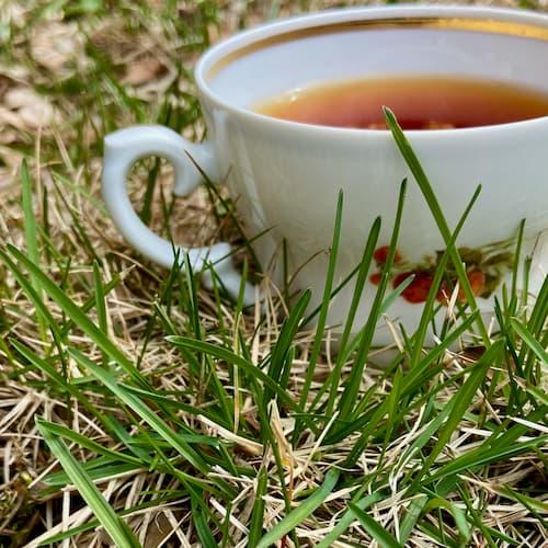 Teas for allergy relief