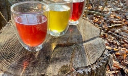 Choose colourful teas for wellness